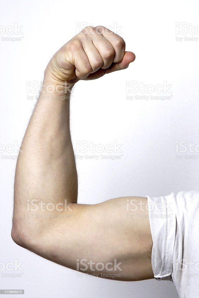 Arm Muscles royalty-free stock photo