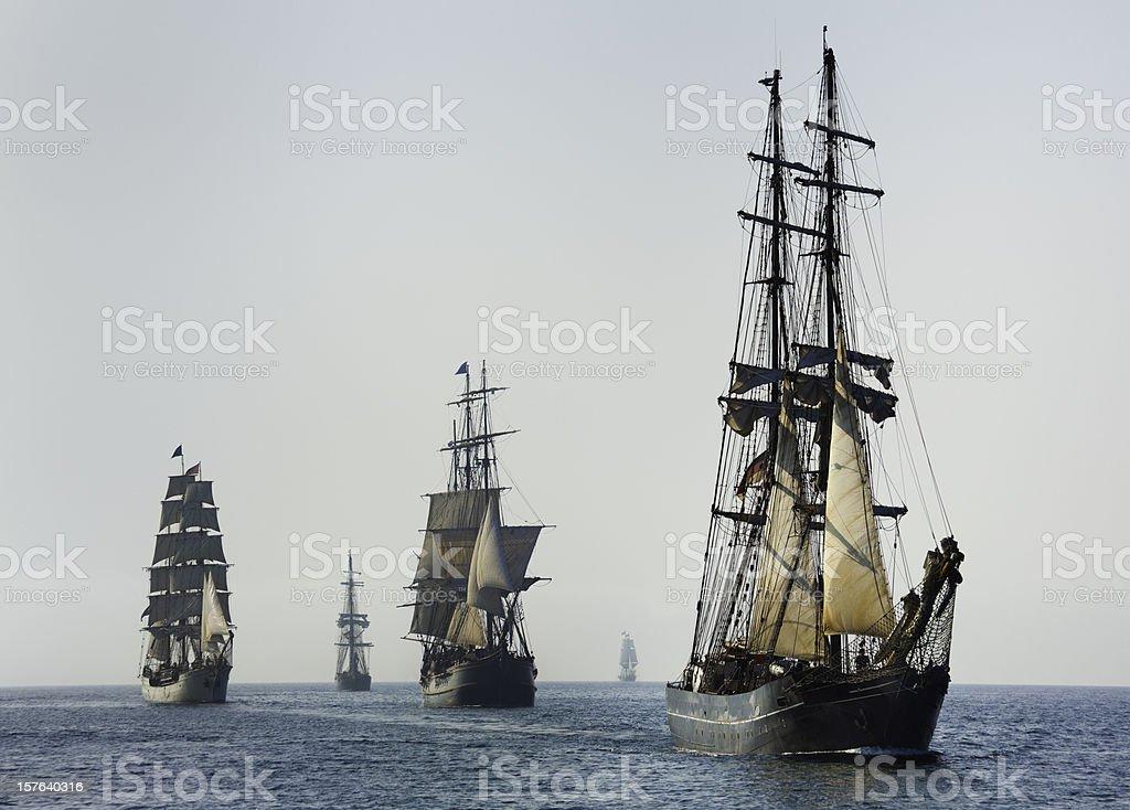 Armada of Tall Ships Sails at Morning stock photo