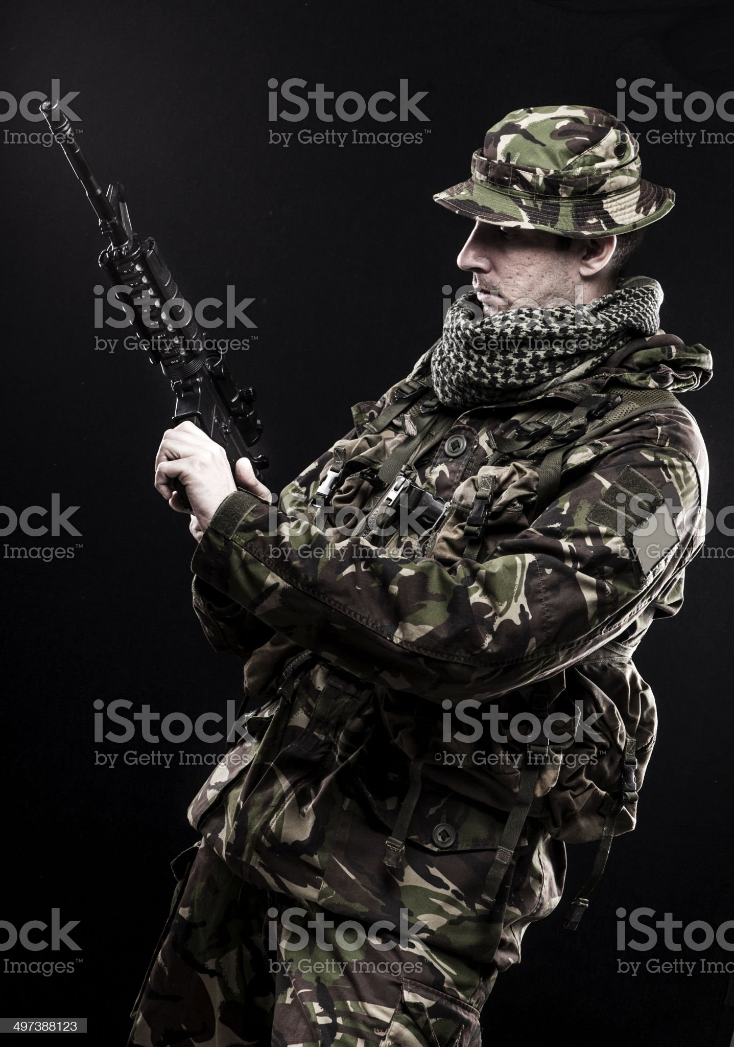 Armed forces royalty-free stock photo