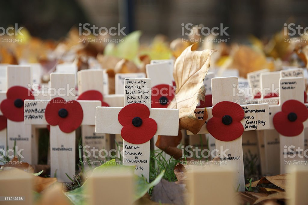 Armistice Day stock photo