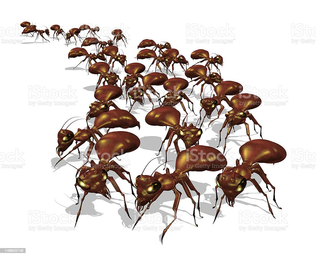 Army of Ants royalty-free stock photo