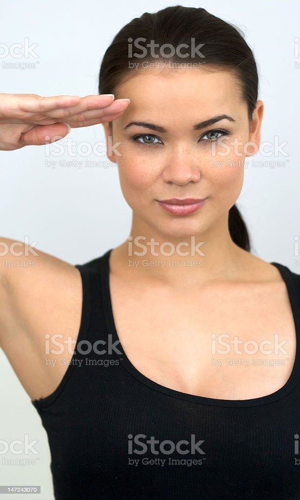 Army Salute royalty-free stock photo