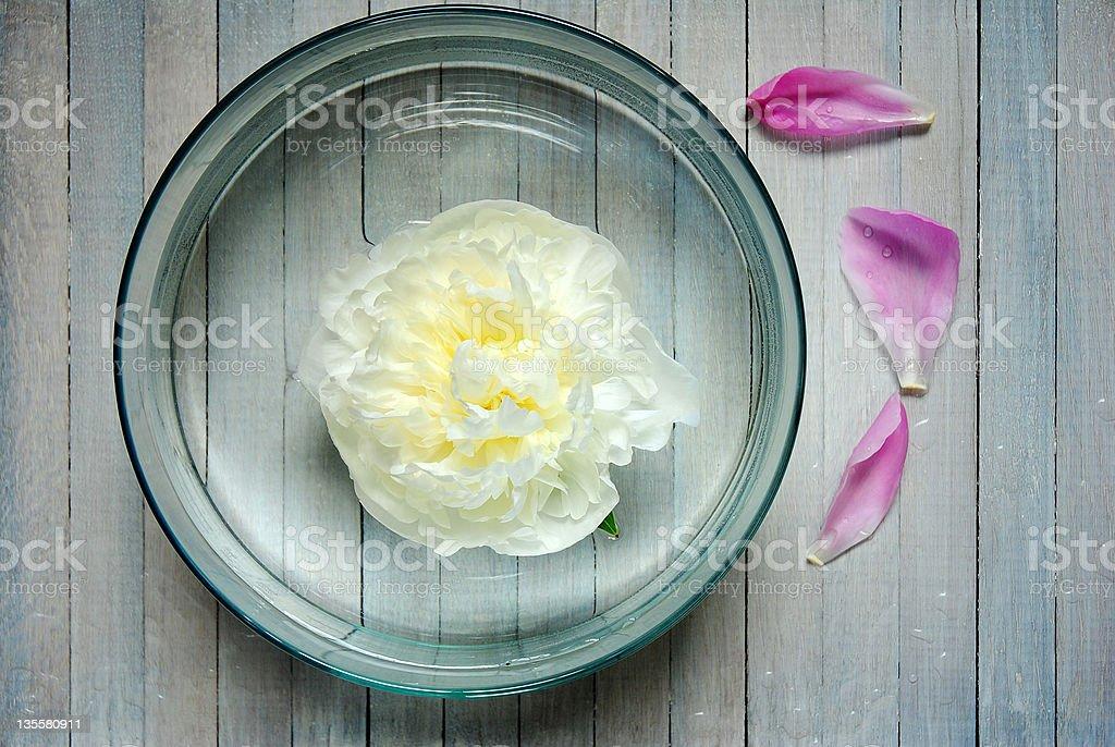Aroma bowl royalty-free stock photo