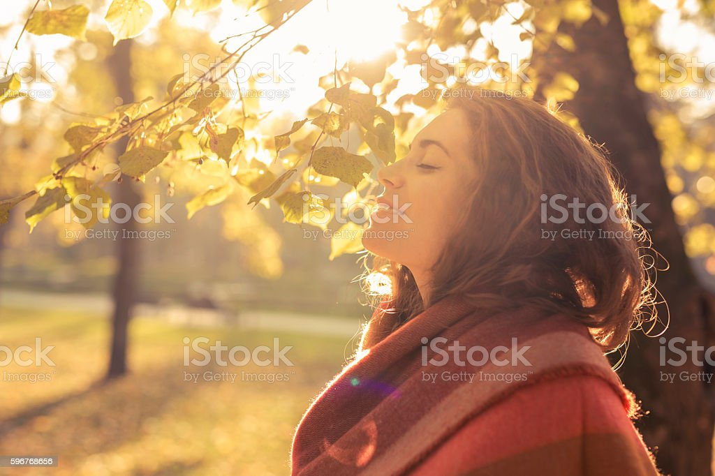 Aroma of the fall stock photo