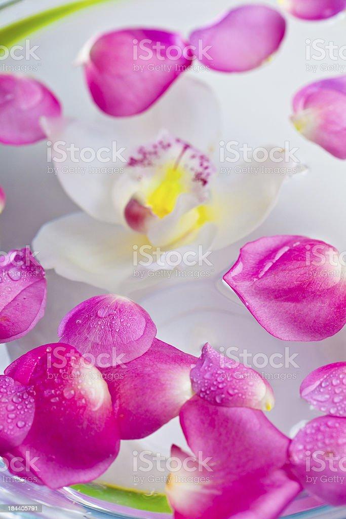 Aroma treatment royalty-free stock photo