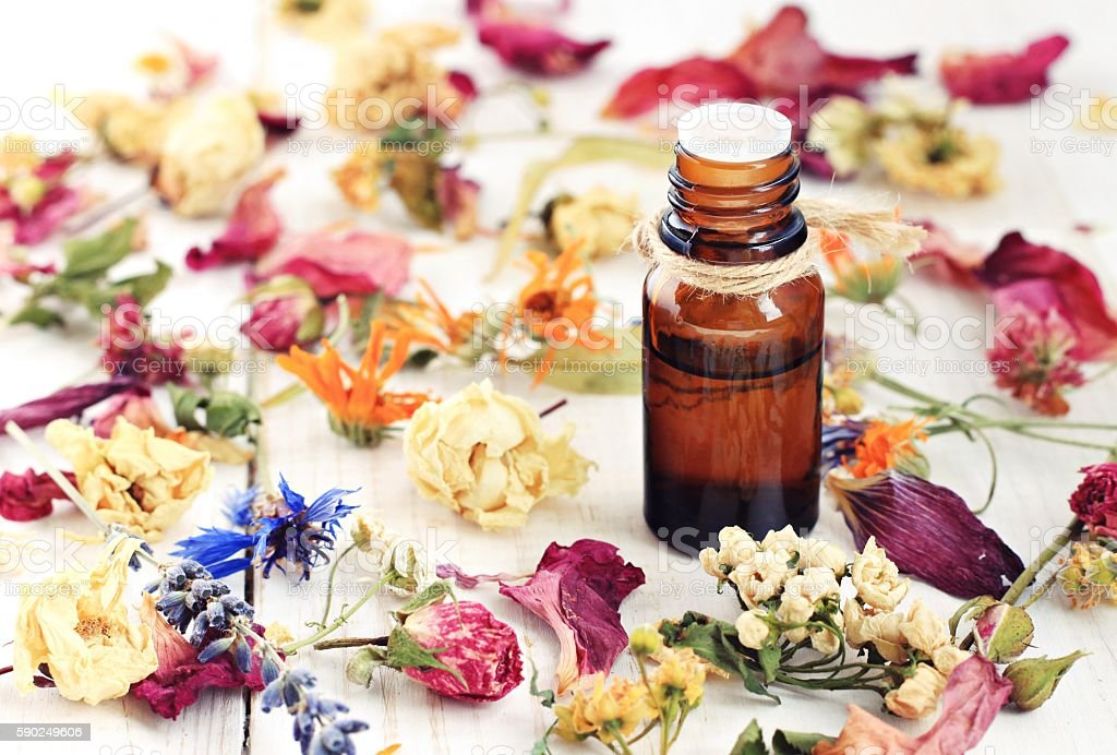 Aromatic herbal oil, dried flowers stock photo