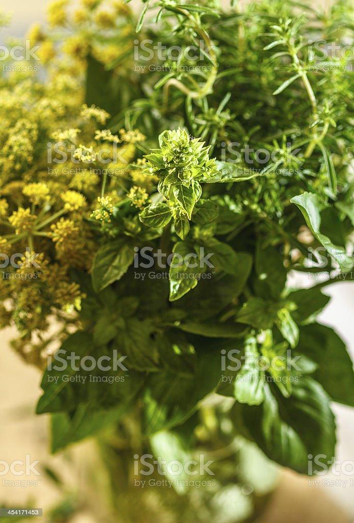 Aromatic herbs royalty-free stock photo