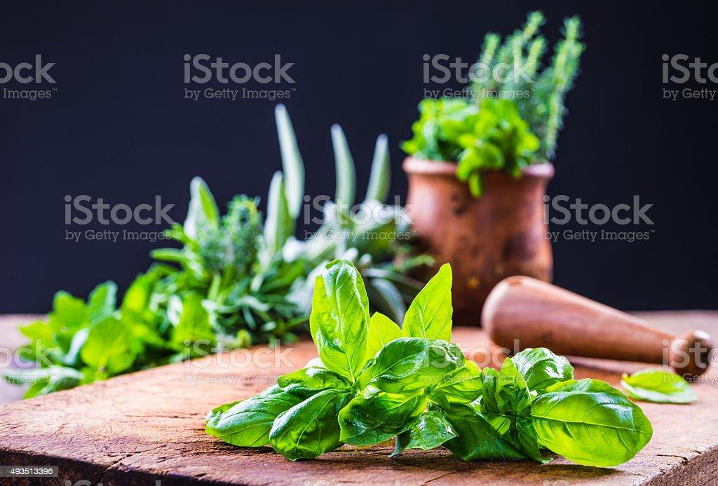 Aromatic herbs. stock photo