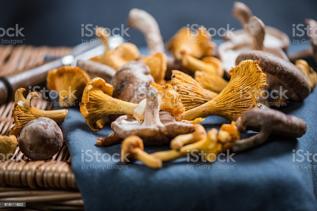 Aromatic wild mushrooms on ratan basket stock photo