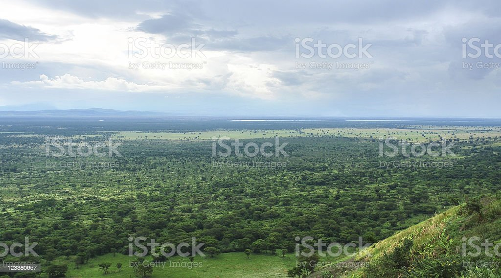 around Bwindi Impenetrable Forest in Africa royalty-free stock photo