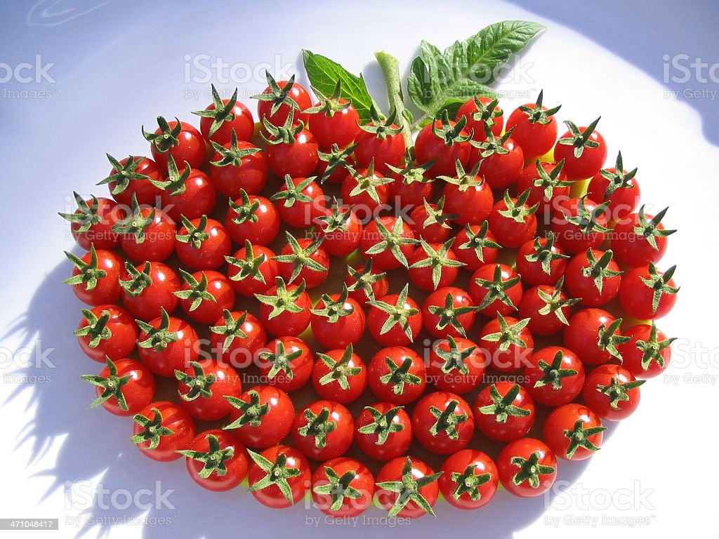 Arrangement of Beautiful Cherry Tomatoes! royalty-free stock photo