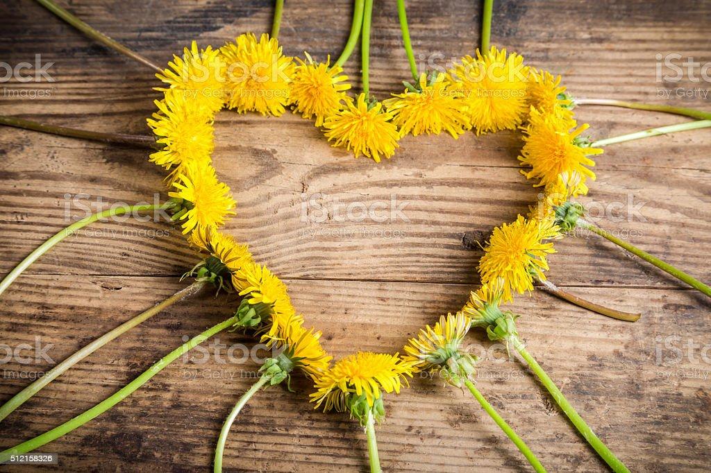 Arrangement of dandelions in the heart shape stock photo