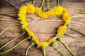 Arrangement of dandelions in the heart shape