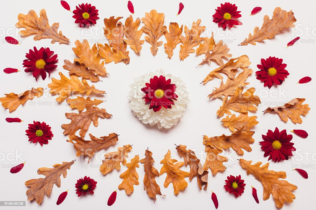 Arrangement of dry leaves and red and white flowers stock photo