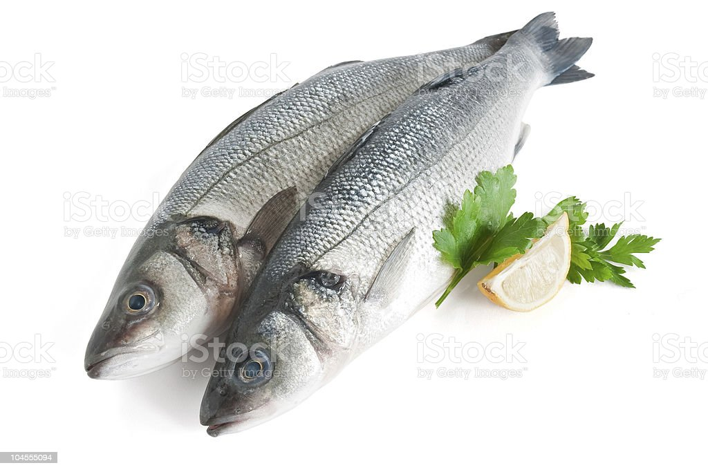 Arrangement of two sea basses with parsley and lemon royalty-free stock photo