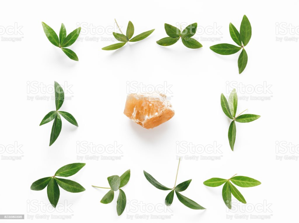 Arrangement With Green Leaves And Stone stock photo