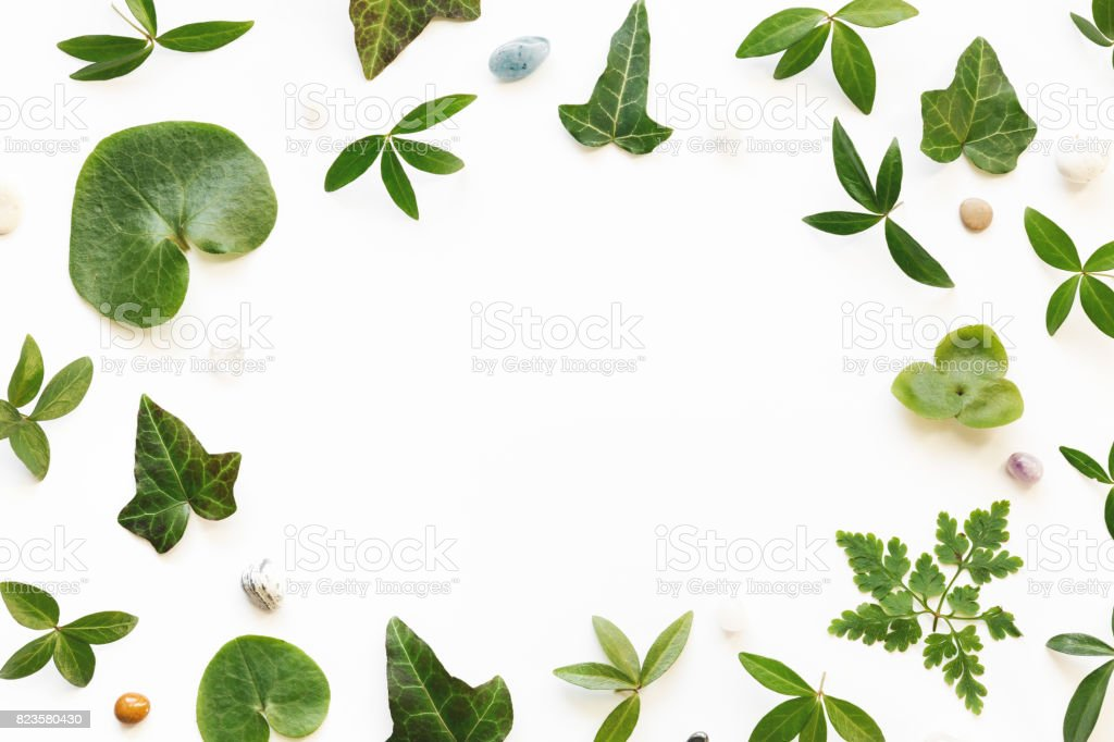 Arrangement With Green Leaves And Stones stock photo