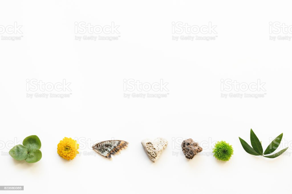 Arrangement With Natural Elements stock photo