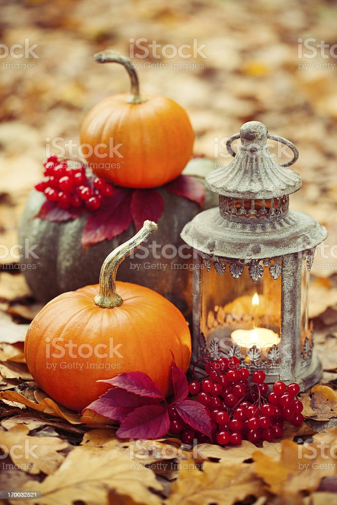 Arrangement with pumpkins and lantern stock photo