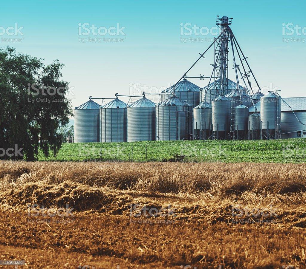 Array of Grain Silos stock photo