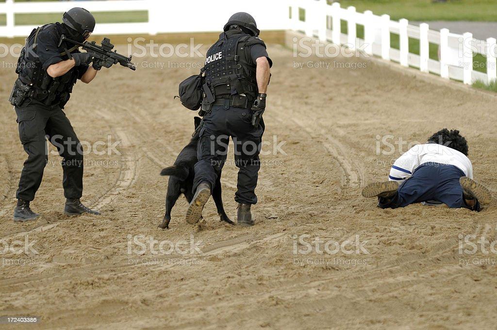 Arresting  a criminal royalty-free stock photo