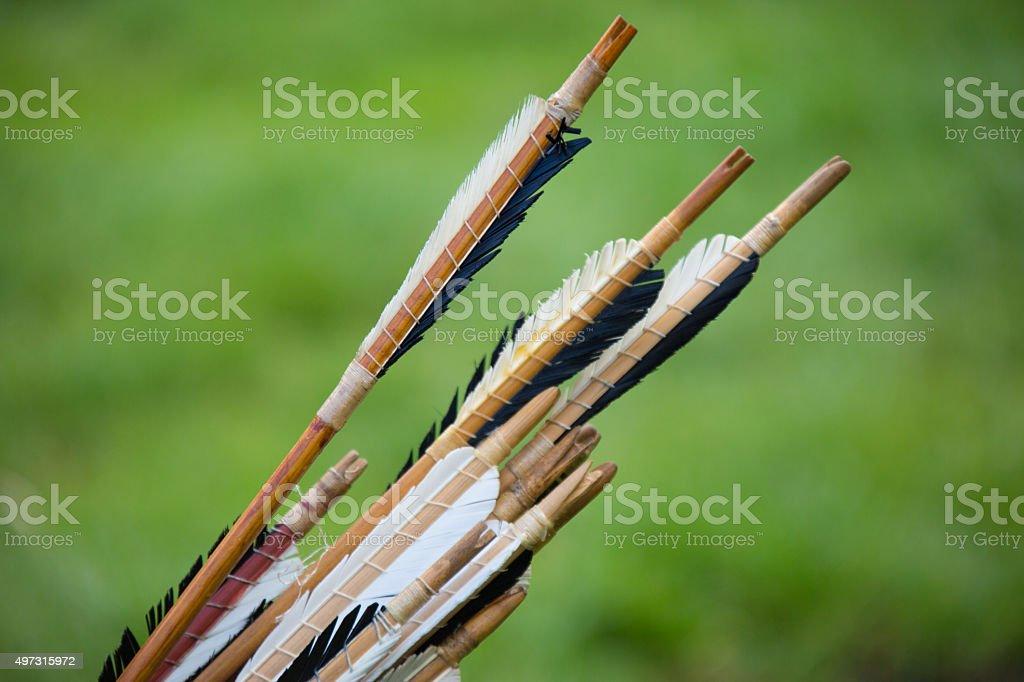Arrow Fletching stock photo