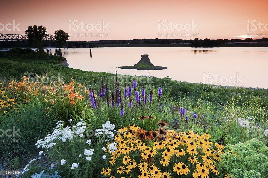 Arrow Island on Mississippi stock photo