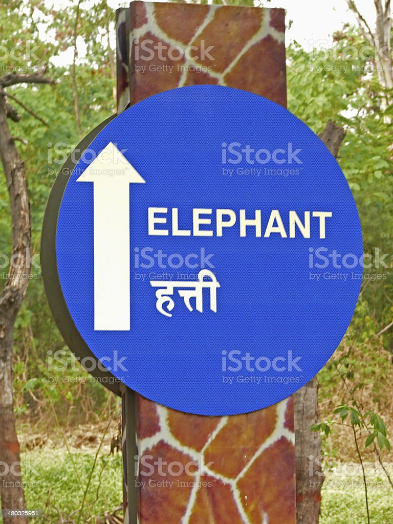 Arrow on Signboard indicating direction of an Elephant place stock photo