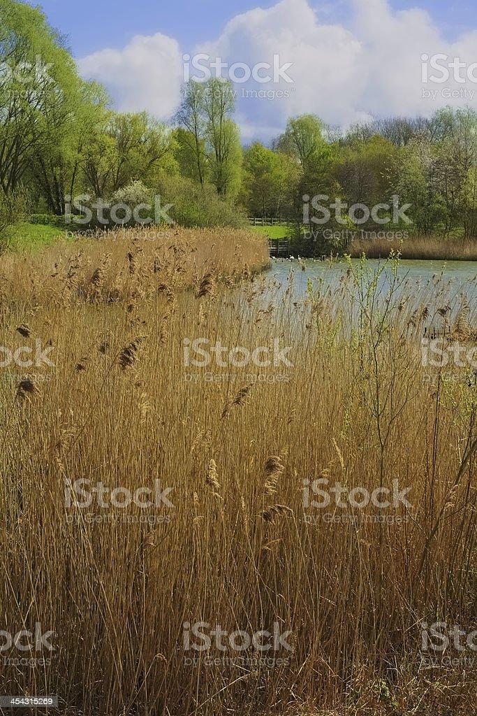 arrow valley royalty-free stock photo