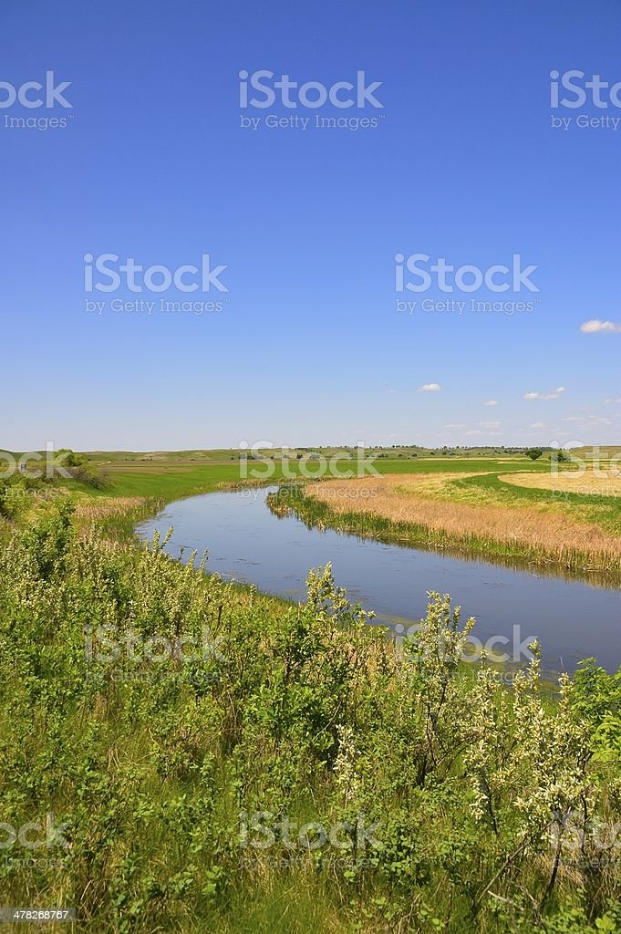 Arrowwood NWR James River Vertical royalty-free stock photo