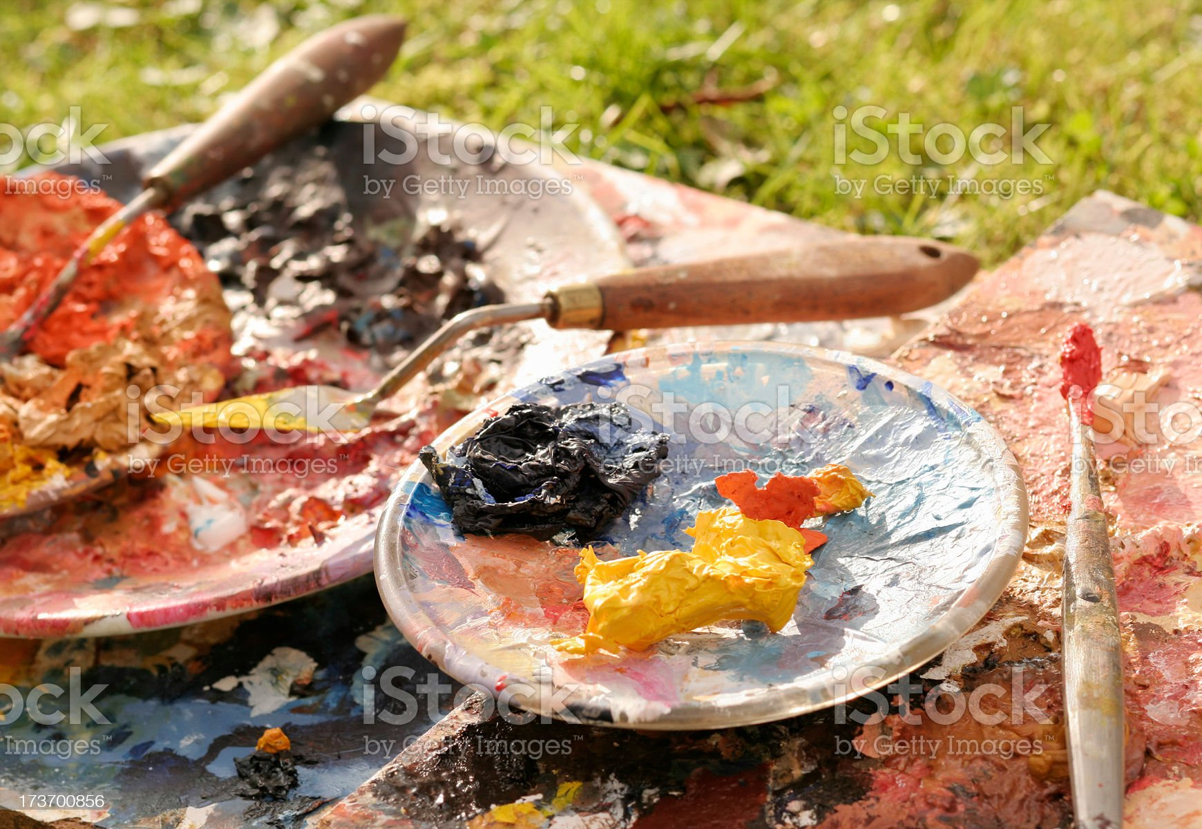 Art in Nature royalty-free stock photo