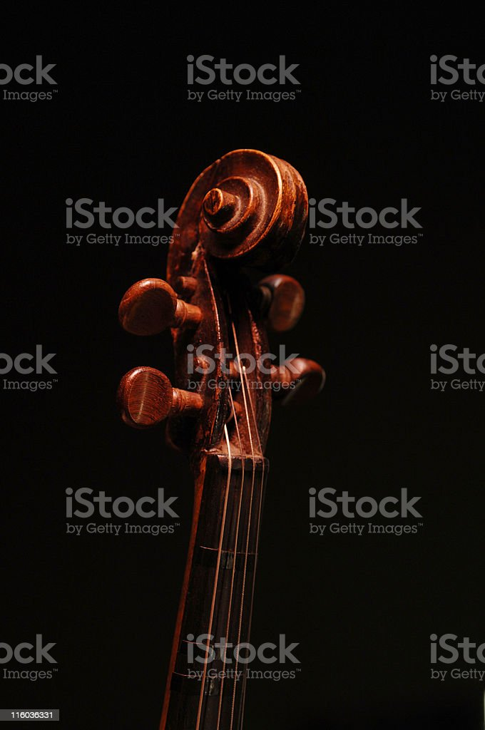 Art of the Violin royalty-free stock photo