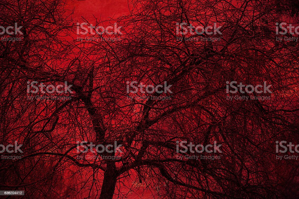 Art Photo mystical tree on a red background stock photo