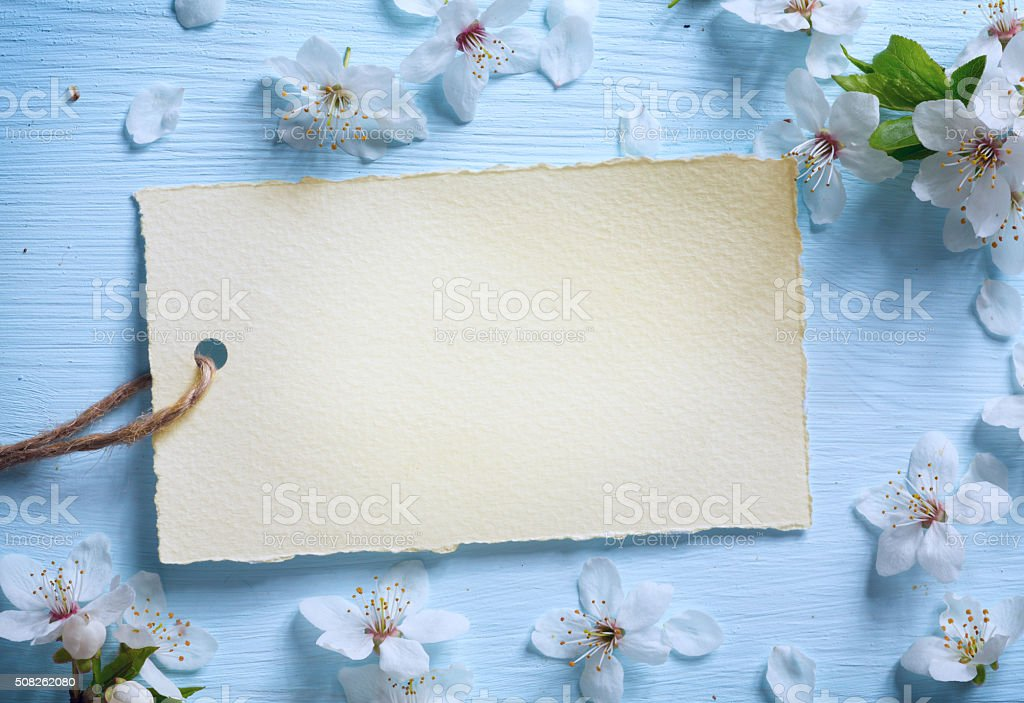 art Spring floral border background with white blossom stock photo