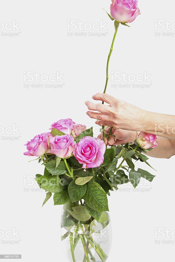 Arthritis: Arthritic senior hands holding a flower royalty-free stock photo