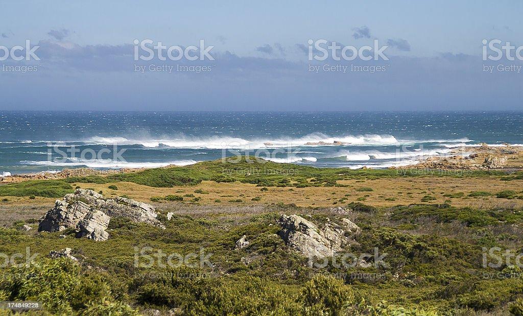Arthur River Coastline stock photo
