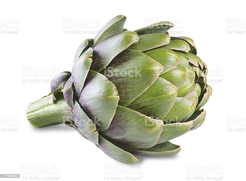 artichoke stock photo