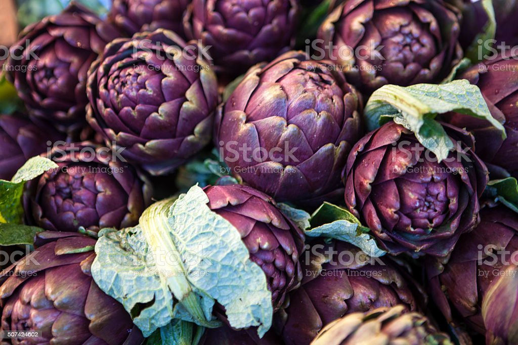 Artichoke, unblown flower stock photo