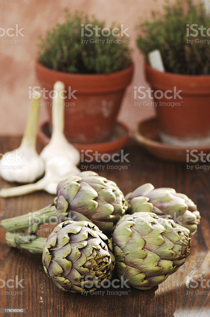 artichokes, garlic and thyme royalty-free stock photo
