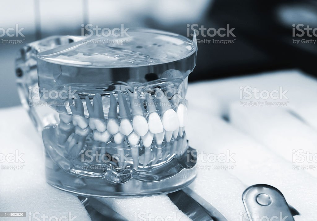 Articulator with dentures royalty-free stock photo
