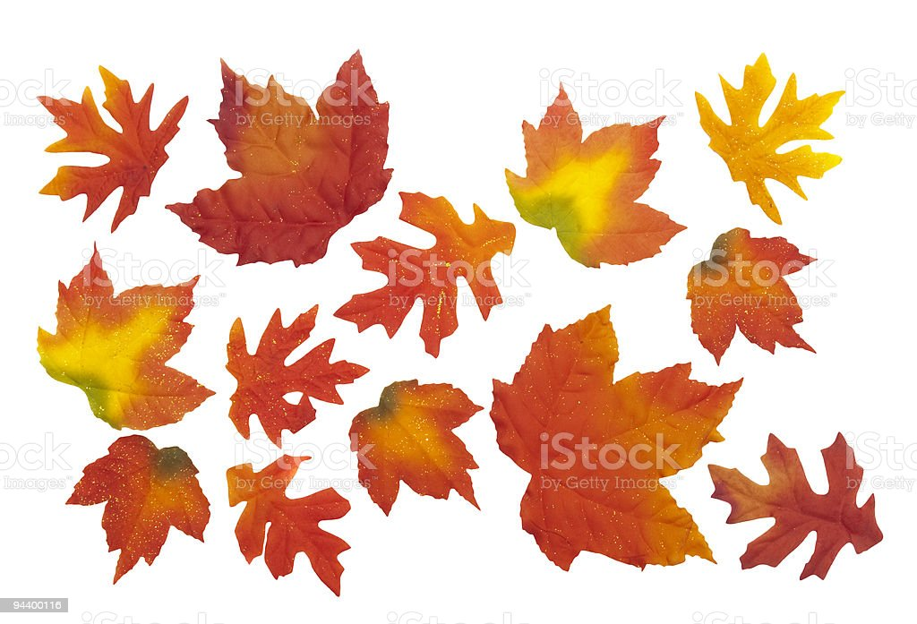 Artificial autumn leaves on white background stock photo
