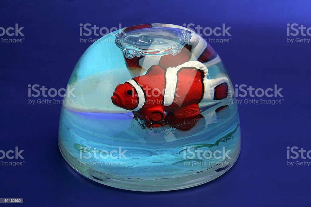 Artificial clownfish stock photo