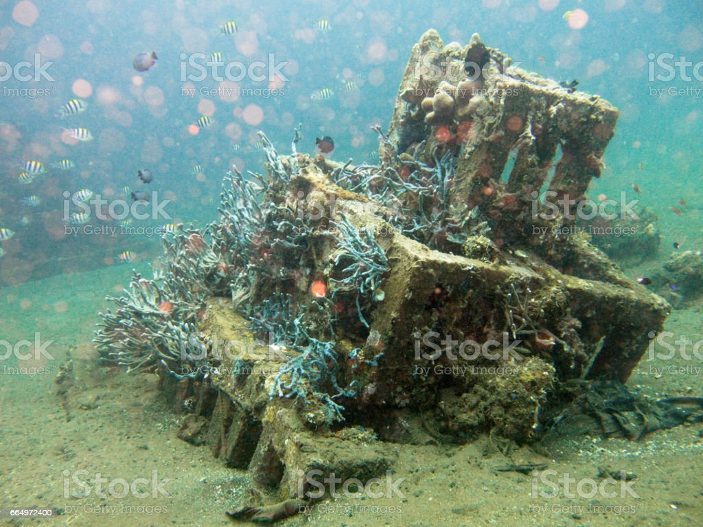Artificial Coral Reef known as The Pyramids, Javes Sea, Amed, Bali, Indonesia. stock photo