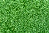 A Quick Overlook of Grass – Your Cheatsheet