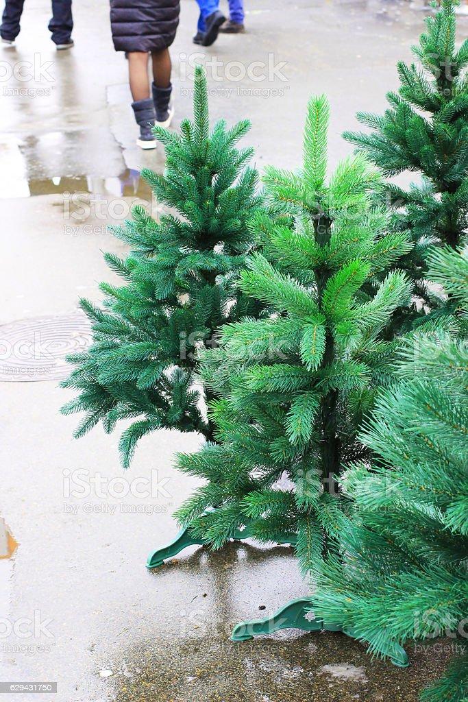 Artificial green Christmas tree on the wet asphalt stock photo