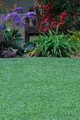 How I Achieved Maximum Success with Lawns