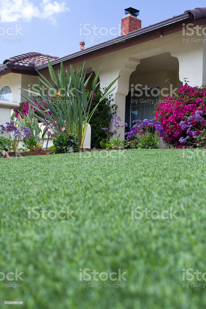 Artificial Lawn Vertical stock photo
