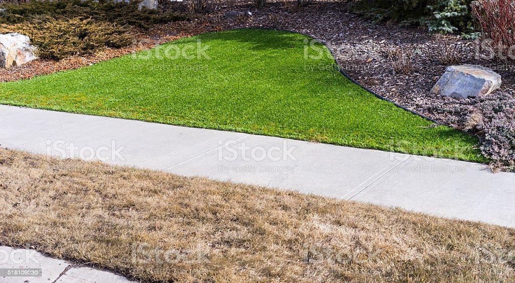 Artificial lawn vs natural stock photo