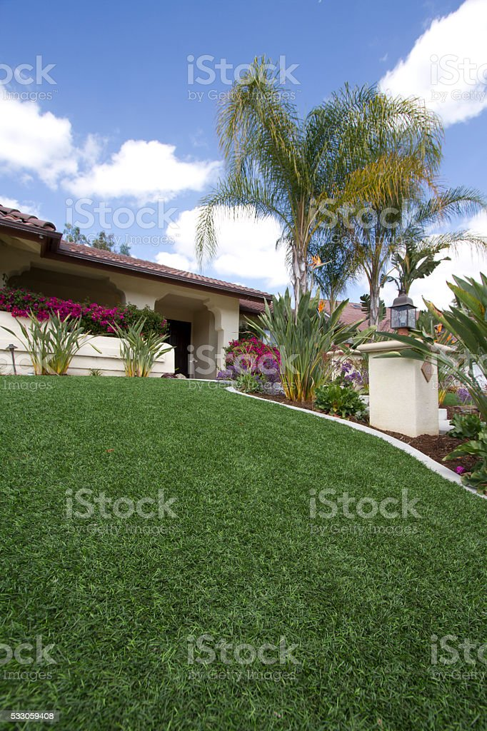 Artificial Lawn Wide Vertical stock photo