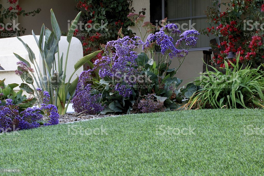Artificial Lawn With Waterwise Landscaping stock photo